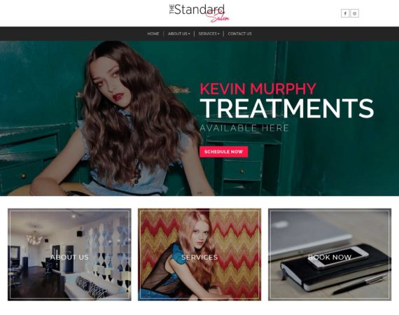 James Benavides - Web Design Portfolio - Standard Salon
